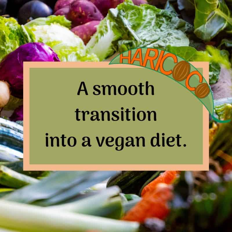 transition into a vegan diet